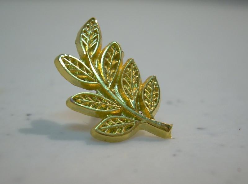 Pin Acacia Dorado