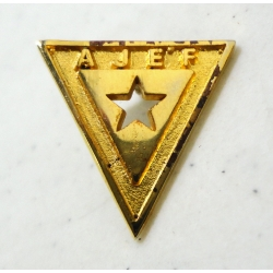 Pin AJEF Dorado